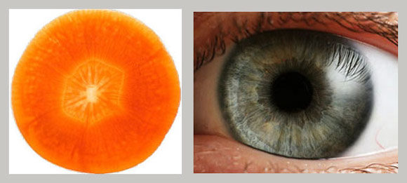 Carrots = eyesight