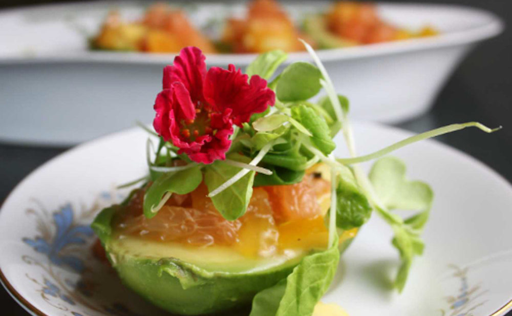 Avocado-citrus-salad