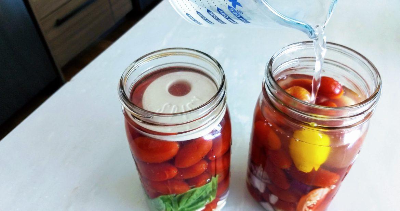 tomato ferment