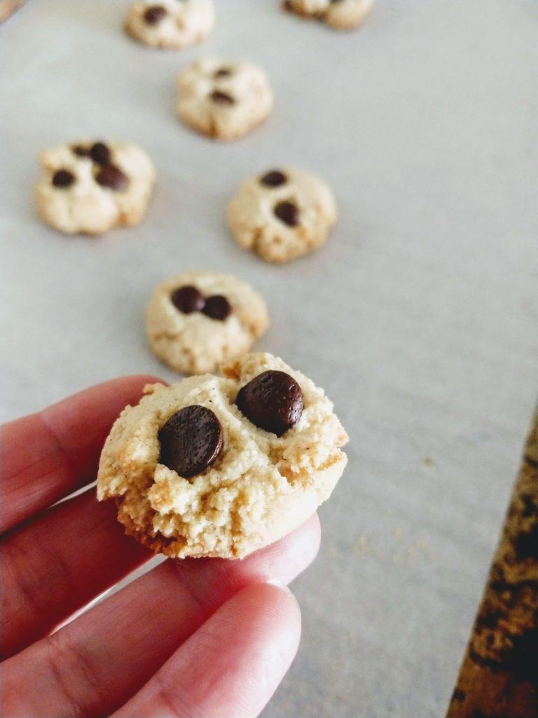 little vegan cookie