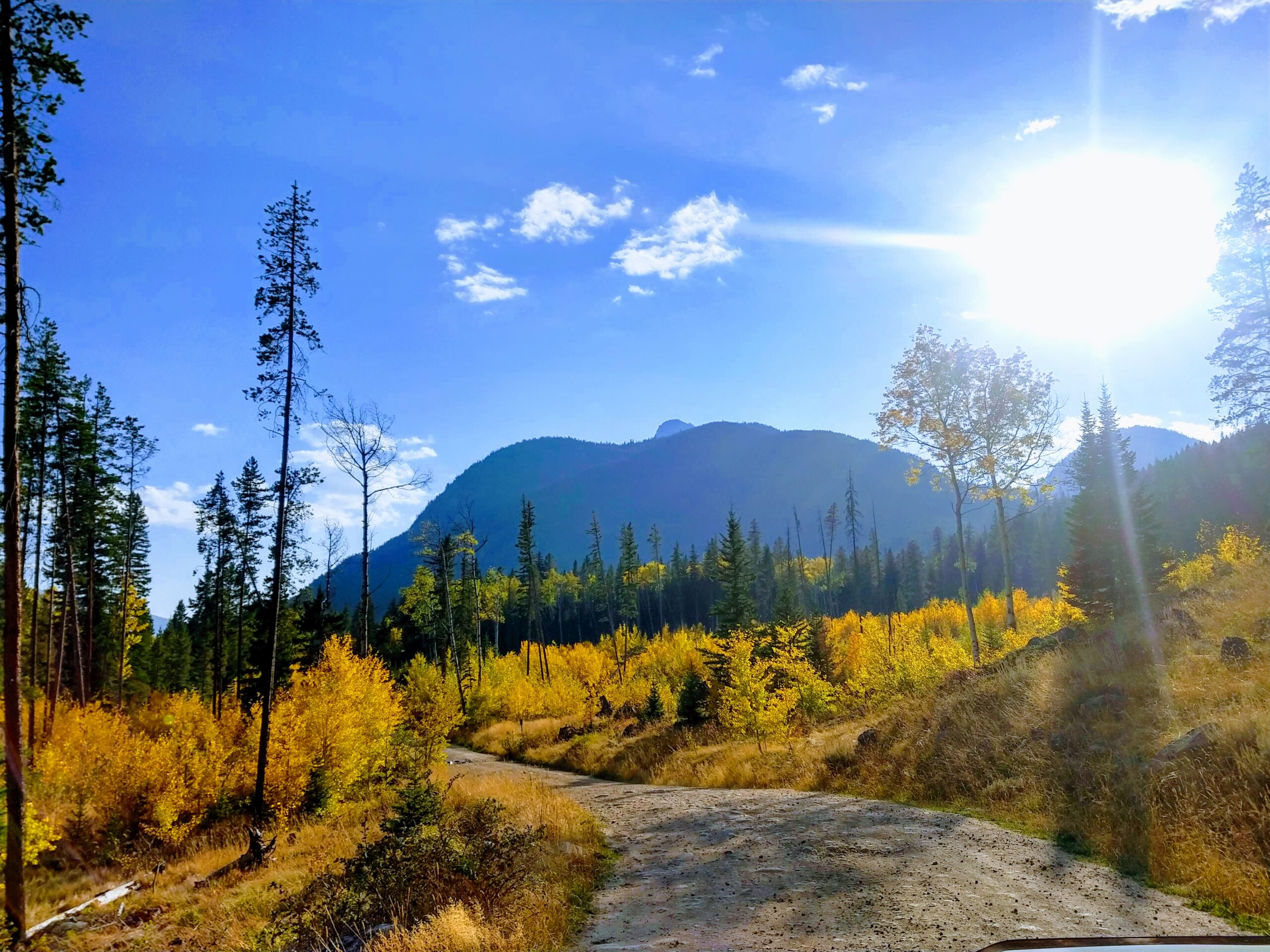 Montana Retreat